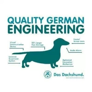 Did You Know: Wire-haired Dachshunds